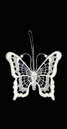 Schmetterling Plauener Spitze